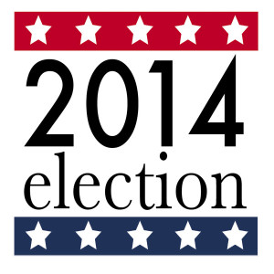Vote2014graphic